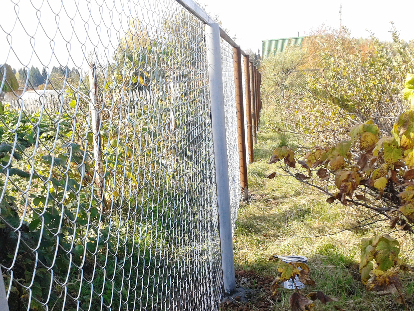 Забор своими руками из сетка рабица фото забора 24